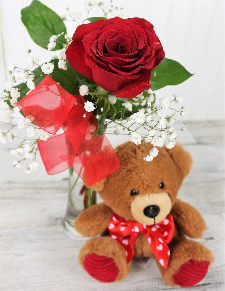 Single Red Rose with Teddy Bear