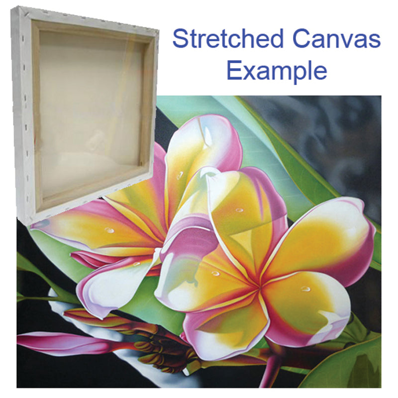 stretched canvas example