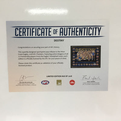 WCE DESTINY PRINT WITH COA Certificate of Authenticity
