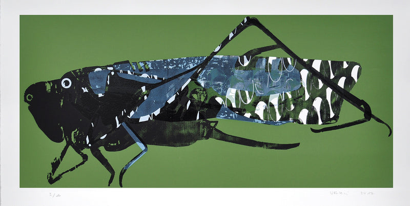 Matko Vekic Print Grasshopper #1 - Matko Vekic Print Grasshopper #1 - 5 Pieces Gallery - Contemporary Art & Photography