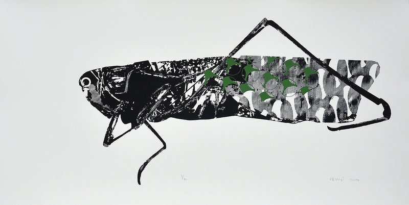 Matko Vekic Print Grasshopper #3 - Matko Vekic Print Grasshopper #3 - 5 Pieces Gallery - Contemporary Art & Photography