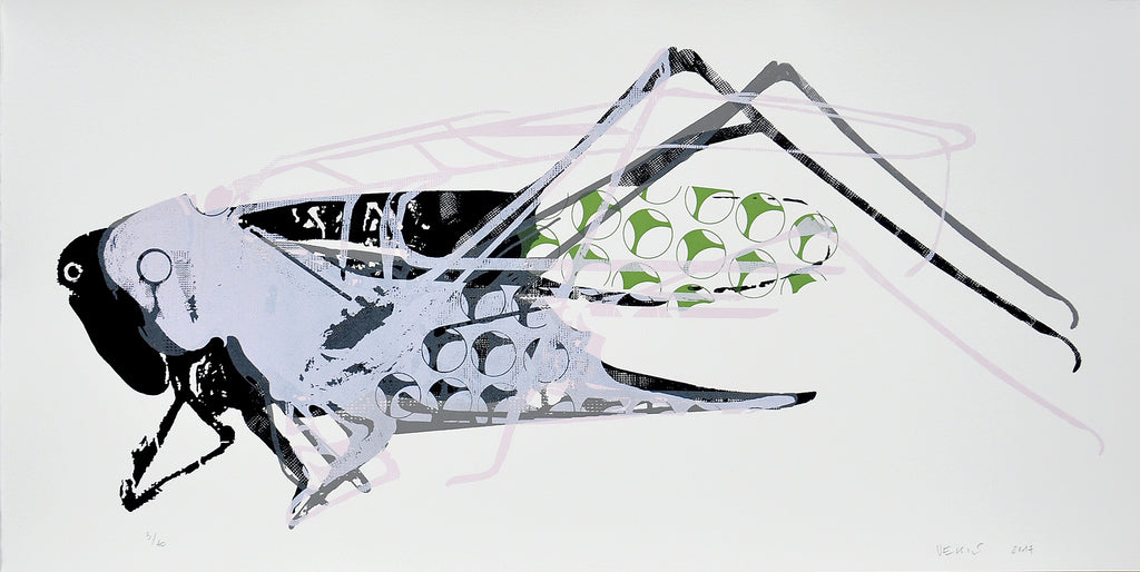 Matko Vekic Print Grasshopper #7 - Matko Vekic Print Grasshopper #7 - 5 Pieces Gallery - Contemporary Art & Photography