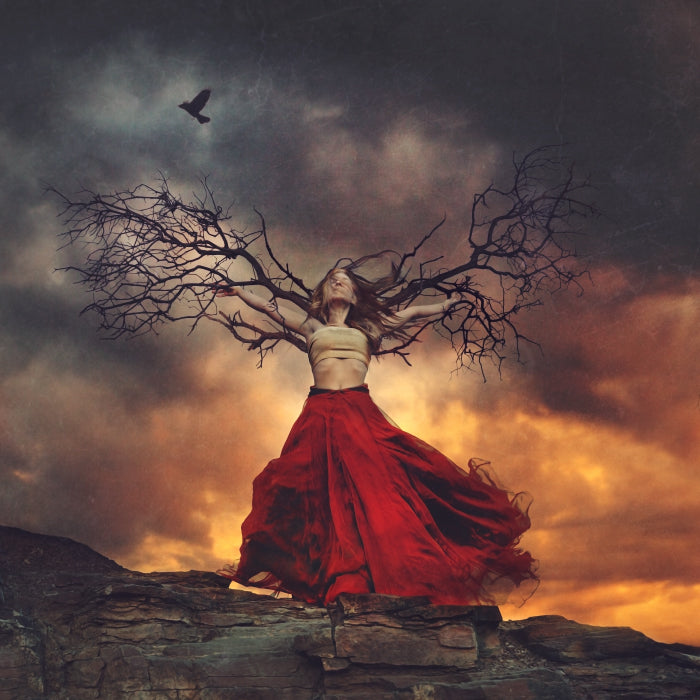 Brooke Shaden Haunted Wings