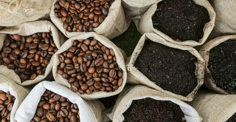 Can You Buy Ground Coffee Beans
