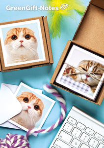 Waffles the Cat GreenGift-Notes