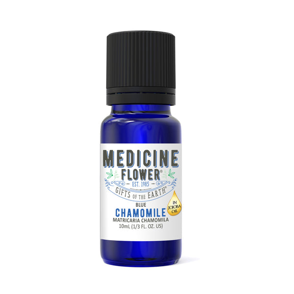 Chamomile Blue Essential Oil Jojoba