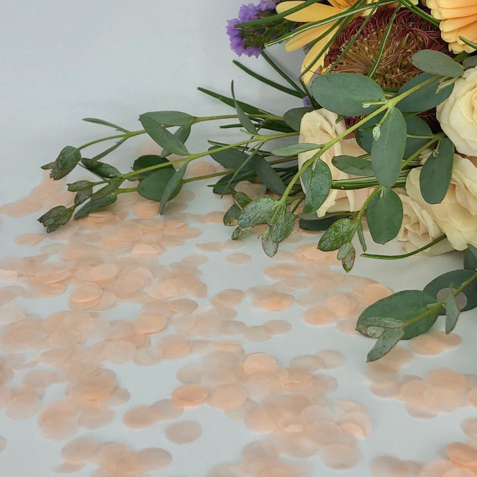 Tissue Paper Eco Confetti - 10g / 1 portion SAMPLE-Eco Confetti