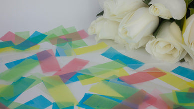 Rice Paper Eco Confetti - 10g / 1 portion SAMPLE-Eco Confetti
