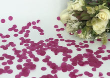 Load image into Gallery viewer, Tissue Paper Eco Confetti - 10g / 1 portion SAMPLE-Eco Confetti