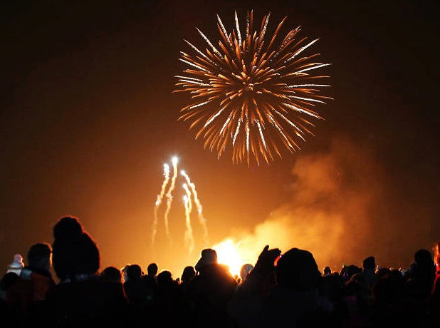 Bonfire Night and keeping anxious dogs safe during fireworks season