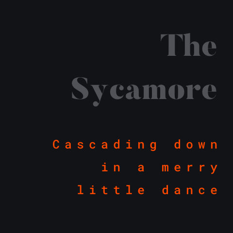 The Sycamore charm