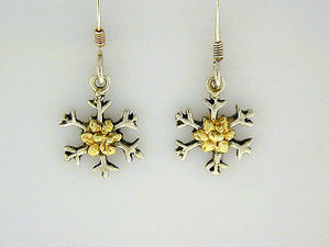 EW046  Snowflake with Small Earring Wires