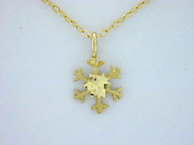 N364  Snowflake with 14kt Necklace