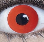 Lens - Red Mini Sclera - ONE DAY