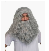 Wizard Beard and Wig Set