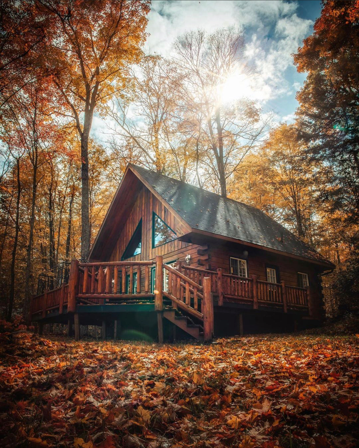 f-stop coffee #coffeeandphoto autumn colors cathedrals of the forrest
