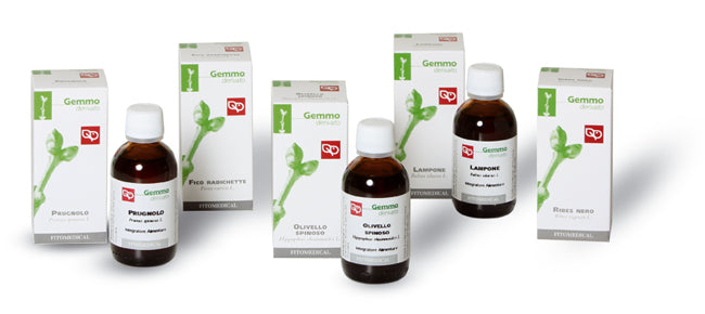 Fitomedical Ribes Nero Gemmo Derivato 100 ml