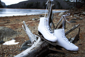 White leather-lined figure skate hanging on tree branch