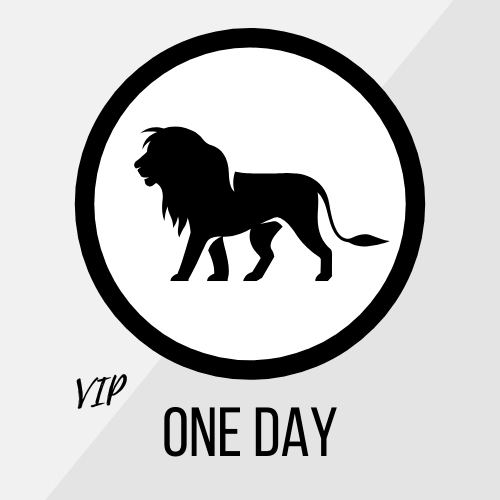 VIP One Day Package