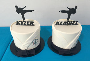 karate birthday cake kids twins