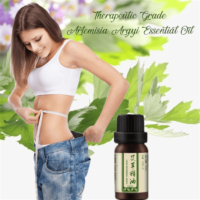 Therapeutic Grade Artemisia Argyi Essential Oil