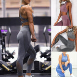 Vertvie Women Seamless Yoga Set Fitness Sportswear Female Gym Leggings Push Up Padded Sport Bra Solid Tracksuit Workout Clothes