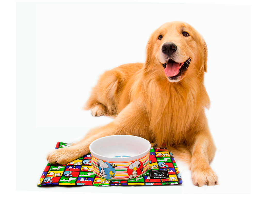 PLACEMATS SNOOPY CHECKCRED - Zooz Pets