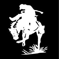 Rodeo Cowboy Decal