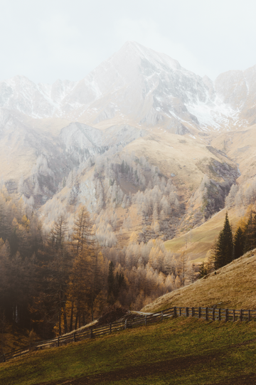 The Alps Vintage Print Download