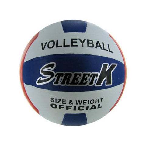 Official Size and Weight Volleyball ( Case of 4 )