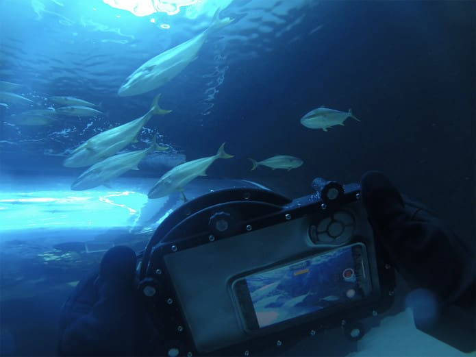 underwater view of the television