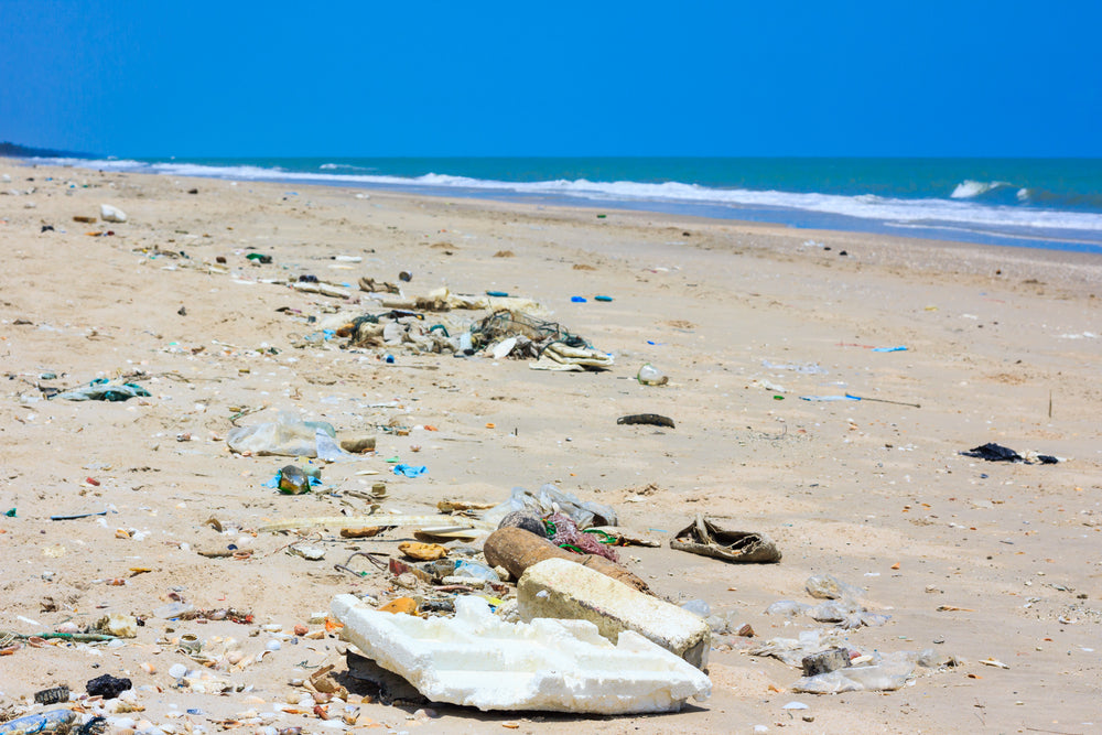 Trashed Florida Beach with Plastic Waste