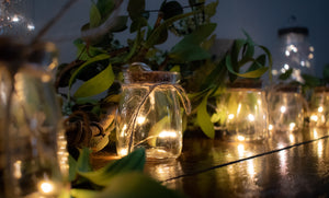 Mini Mason Jar Lights