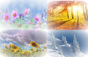 Seasons Wonders