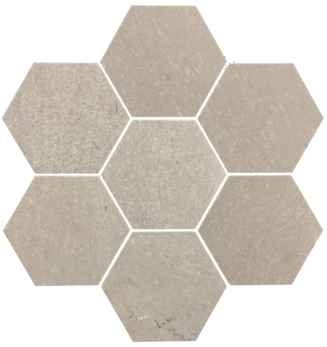 SAND DOLLAR HEXAGON