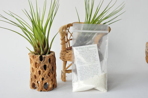 Air Plant Fertilizer