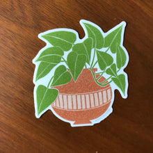 Load image into Gallery viewer, Pothos Plant Sticker