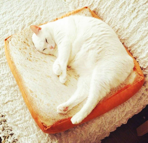 Creative Toast Bread Slice Style Pet Bed
