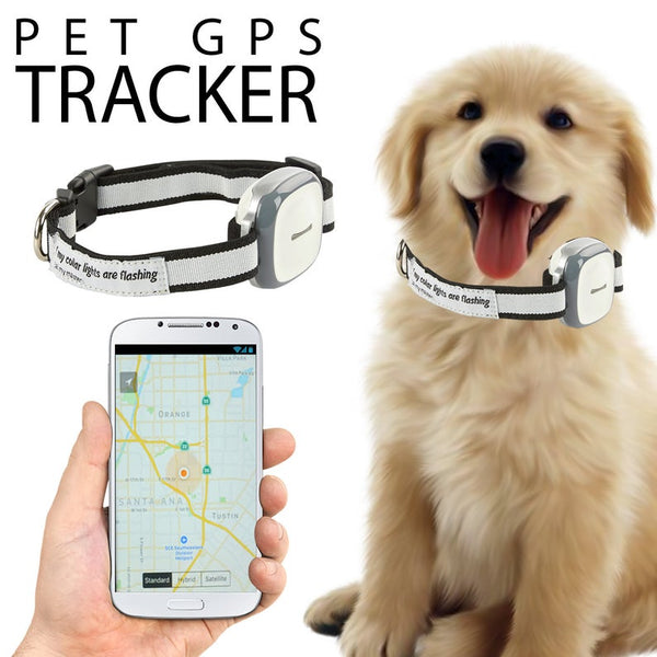 Dog GPS Tracker and Pet Finder
