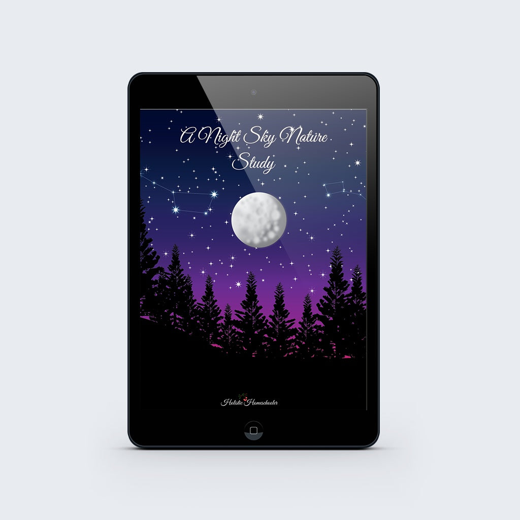 A Night Sky Nature Study Printable