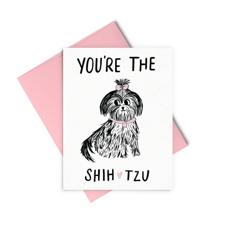 Talking Out of Turn - You're The Shih Tzu