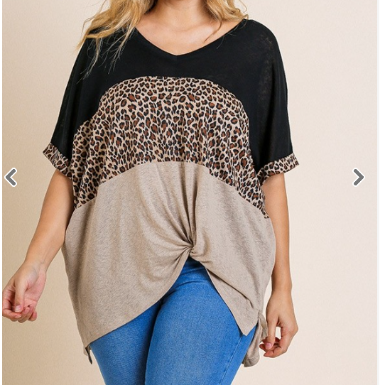 Lena Short Sleeve Animal Print Color-Blocked V-Neck Top W/ Front Knot Detail