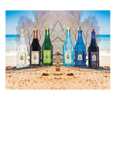 Load image into Gallery viewer, Encantadora Mixed Case (6 bottles)