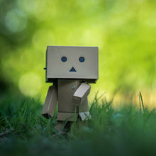 Danbo™ Normal
