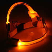 LEDs Pet Dog Cat Safety Collar Glow Flash Light Belt Leash Tether Rope - Oveya