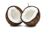 Botanicals Beauty product ingredients coconut milk