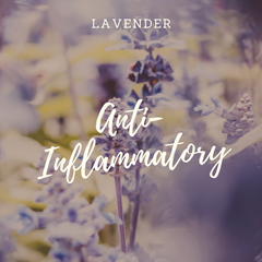 Botanicals Beauty lavender infused oil anti-inflammatory