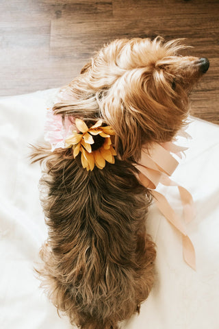 Custom Dog Of Honor Design - Flower Crown