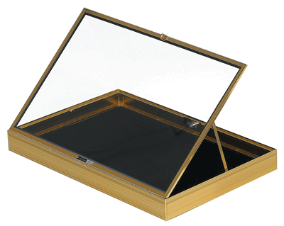 Aluminum Display Case (locking)