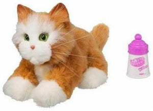 Hasbro Fur Real Friends Kitten (Marmalade) - DREAM Playhouse